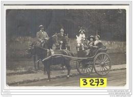 7465 AK PC CARTE PHOTO   ATTELAGE CALECHE A IDENTIFIER - Cartoline