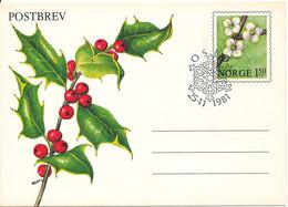 Norway FDC 25-11-1981 Postbrev Postal Stationery - Norway