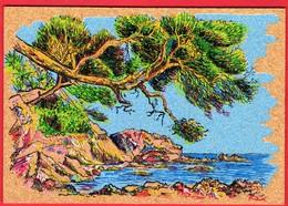 -- PEINTURE Sur LIEGE INALTERABLE - LES PINS PENCHES - Carte Postale -- - Cartes Postales