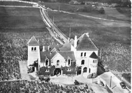 AGRICULTURE Vignoble Vin - 21 - VOUGEOT : Le Chateau Du CLOS MARIN - CPSM Dentelée Grand Format  - - Vigne