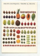 Fruits Exotiques - Tropical Fruits - Exotische Fruchte - Frutti Esotici - Sonstige