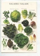 Salades - Salds : Mache, Chicorée, Scarole, Pissenlit, Trévise, Batavia, Chene, Lollo Rosa, Rougette, Endive Epinard, - Altri