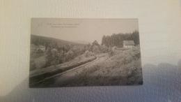 3/  Grub Aus Dem Thuringer Wald - Allemagne