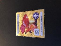 Chad 2003, Mushroom, Scouting, Minr 2471, MNH. Cv 12 Euro - Tschad (1960-...)