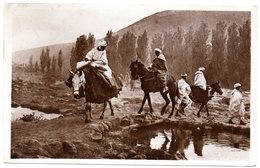 Tarjeta Postal  De  Argelia. Route Pour Le Souk. - Otros