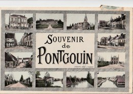 SOUVENIR DE PONTGOUIN. - Carte Multivues - Other Municipalities