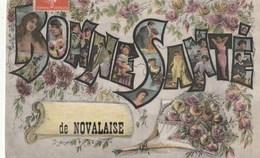 Carte Postale Ancienne Fantaisie Du 73 - Bonne Santé De NOVALAISE - Fleurs - Portrait De Femmes - Francia
