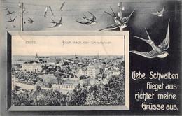 ZEITZ GERMANY~BLICK NACH UNTERSTADT~LIEBE SCHWALBEN FLIEGET Aus RICHTET MEINE GRÜSSE Aus-1908 POSTCARD 38956 - Zeitz