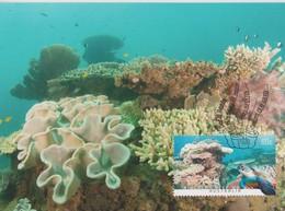 Australia 2013 Coral Reef, Below Ningaloo Reef WA, Maximum Card - Maximum Cards