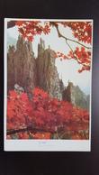 KOREA NORTH 1950s  Postcard - Corée Du Nord