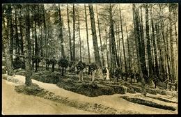 Bruneck, 1915, Brunico, Soldaten-Waldfriedhof _1, Friedhof, Südtirol, Verlag Mahl - Bolzano (Bozen)