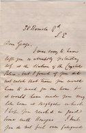VP14.513 - CRYSTAL PALACE ? Lettre De Mr PINCHES ? - Récit - Manuscripts