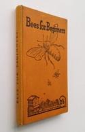 Bees For Beginners / E. H. Taylor. - Welwyn, Herts : E. H. Taylor, S.d. [1923] - Bücher, Zeitschriften, Comics