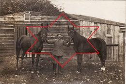 CP Photo 1916 ZIMMERBACH (près Munster) - Soldat Au Lager Protzkasten, Camp Allemand, Cheval (A205, Ww1, Wk 1) - France