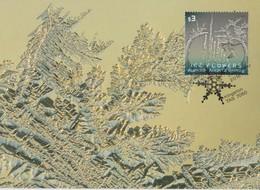 Australian Antarctic Territory 2016 Ice Flowers $ 3, Maximum Card - Maximum Cards