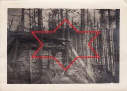 Photo Novembre 1916 Vallée De MUNSTER, HOHROD, Kleinkopf - Abri Allemand En Forêt (A205, Ww1, Wk 1) - Munster
