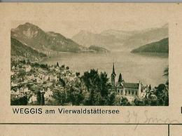 Carte Illustré Neuve N° 182 - 0378 D -  WEGGIS Am Vierwaldstättersee   (Zumstein 2009) - Entiers Postaux
