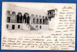 Tunis -  Escaliers Des Lions Du Bardo - Tunisia
