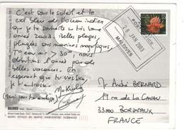 """Timbre  , Stamp """" Poisson """" Sur Cp , Carte , Postcard Du 28/01/2003 - Maldives (1965-...)"""