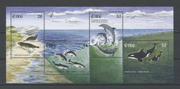 FINLANDE 1997 Bloc N° 24 ** Neuf MNH Superbe C 10 € Faune Marine Mammifères Dauphin Orque Phoques Animaux - Blocs-feuillets