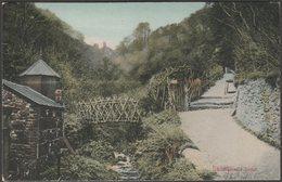 Shanklin Chine, Shanklin, Isle Of Wight, 1905 - Postcard - England