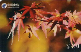TARJETA TELEFONICA DE CHINA. FLORES - FLOWERS. FJ-ZN-12(4-1). (373) - Flores