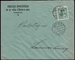 Lettre: Cercle Horticole De La Ville D'Esch-s.-Alz., 4.8.1924, Michel: 128 - Luxembourg