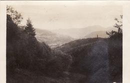 Photo Octobre 1916 Vallée De MUNSTER - Une Vue, Münchberg ?? (A205, Ww1, Wk 1) - Munster