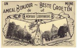 MONTAIGU - SCHERPENHEUVEL - Un Amical Bonjour De - Mijn Beste Groeten Uit ... - Scherpenheuvel-Zichem