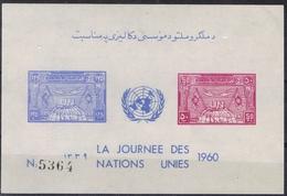 DO 6645  AFGHANISTAN  XX  YVERT NRS BLOK 8  ZIE SCAN - Afghanistan