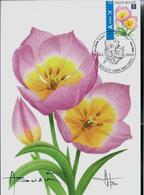 "Fleurs Buzin: CM Du N° 3872a Tulipa  Baken ""Lilac"" Wonder Obl. Bxl: 02/01/2009   Resigné Par A. Buzin - 1985-.. Oiseaux (Buzin)"