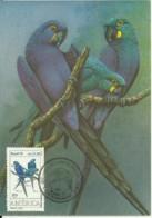 Carte Maximum - Oiseaux - Bresil - Arara Azul - Anodorhynchus Leari - Cartes-maximum