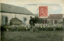 91. ESSONNE - BOISSY LA RIVIERE. Rentrée Des Moutons à La Ferme De Bierville. Rare. - Boissy-la-Rivière