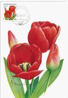 Fleurs Buzin: CM Du N° 3047 A  Obl. Bxl: 10/12/2001  Tulipe Rouge - 1985-.. Oiseaux (Buzin)