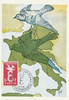 Carte Maximum -  Europa - Postcards