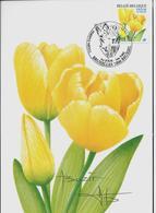 """Fleurs Buzin: CM Du N° 3223 B  Obl. Bxl: 12/11/2003  Tulipe """"Darwin"""" Resigné Par A. Buzin - 1985-.. Oiseaux (Buzin)"""