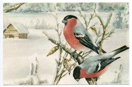 AK -SWEDEN - ERIK FORSMAN - GOUDVINK / BULLFINCH / GIMPEL / BOUVREUIL PIVOINE - Kerstmis