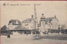 De Haan Aan Zee Coq Sur Mer La Gare Du Tram Electrique (Mini Kreukje) Belle Epoque Tramstation - De Haan
