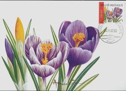 Fleurs Buzin: CM Du N° 3142  Obl. Bxl.: 04/11/2002   Crocus - 1985-.. Oiseaux (Buzin)