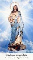 Tiggiano (Lecce) - Santino MADONNA IMMACOLATA Parrocchia San Ippazio - PERFETTO P91 - Religione & Esoterismo