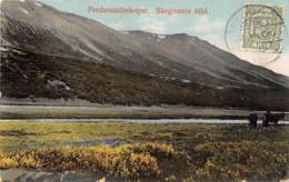 Islande / Pordarstadaskogur - Belle Oblitération - Island