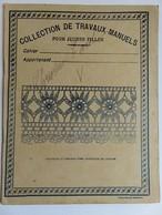 194 - Cahier  Pour Jeunes.filles - Travaux Manuels Dentelle 19ème - E. Flouret Bergerac - Charles Dickens - Buvards, Protège-cahiers Illustrés