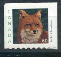 Renard (Animaux) - Canada - 2000 - 1952-.... Règne D'Elizabeth II