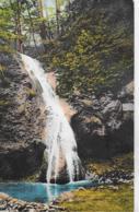 AK 0156  Dürnbacher Wasserfall Bei Waldegg - Verlag Jelenz Um 1910 - Gutenstein