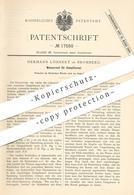 Original Patent - Hermann Löhnert , Bromberg , 1881 , Wasserrost Für Dampfkessel | Kessel , Lokomotive , Bahn , Zug !! - Historische Dokumente