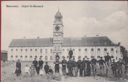 Hemixem Hemiksem Depot St Bernard Geanimeerd Met Kinderen ZELDZAAM Genie Belgian Army Armee Belge Military - Hemiksem