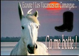 Carte à TROU **Ecoute! Les Vacances En Camargue ...Ca Me Botte** Cheval Et Botte De Gardian Photo - Chevaux