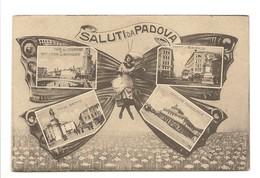 SALUTI  DA  PADOVA - Padova (Padua)