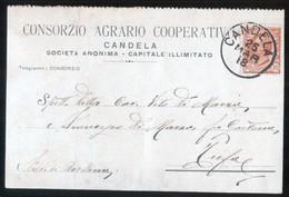CANDELA - FOGGIA - 1918 -  CONSORZIO AGRARIO COOPERATIVO - AGRICOLTURA - Culture