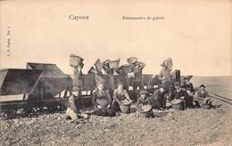 CPA  Cayeux - Ramasseurs De Galets - Cayeux Sur Mer